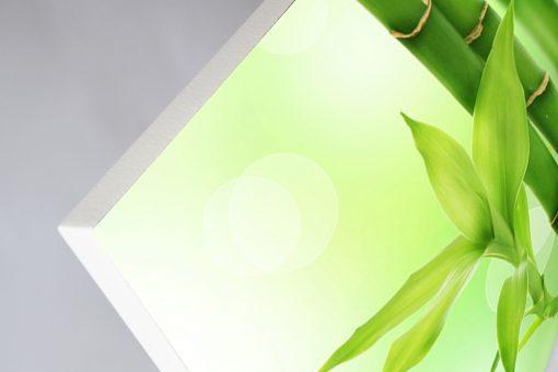 GlasWärmt-Infrarotheizung-Motiv-IMMP-900Watt-Bambus-1200x600x25mm-Detail